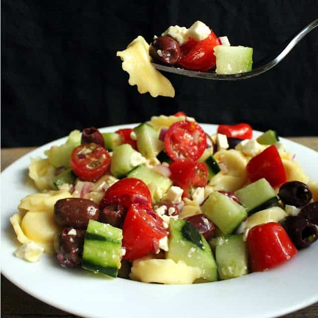 Greek Tortellini Salad on a white plate with a fork full of it.