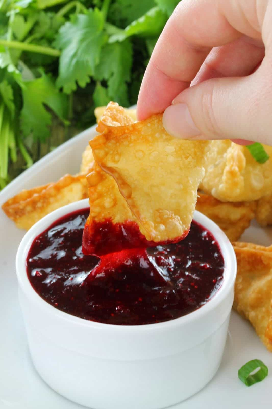 A crispy rangoon is dipped in homemade Cranberry Sweet and Sour Dipping Sauce