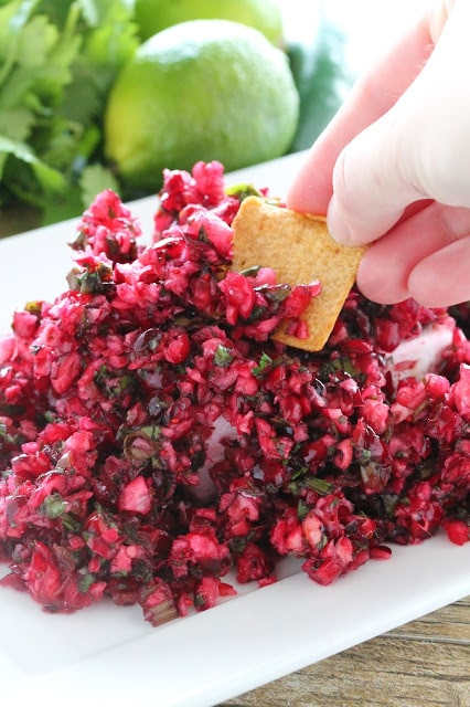 Fresh cranberries are minced up into a healthy, fresh, and vibrant salsa.