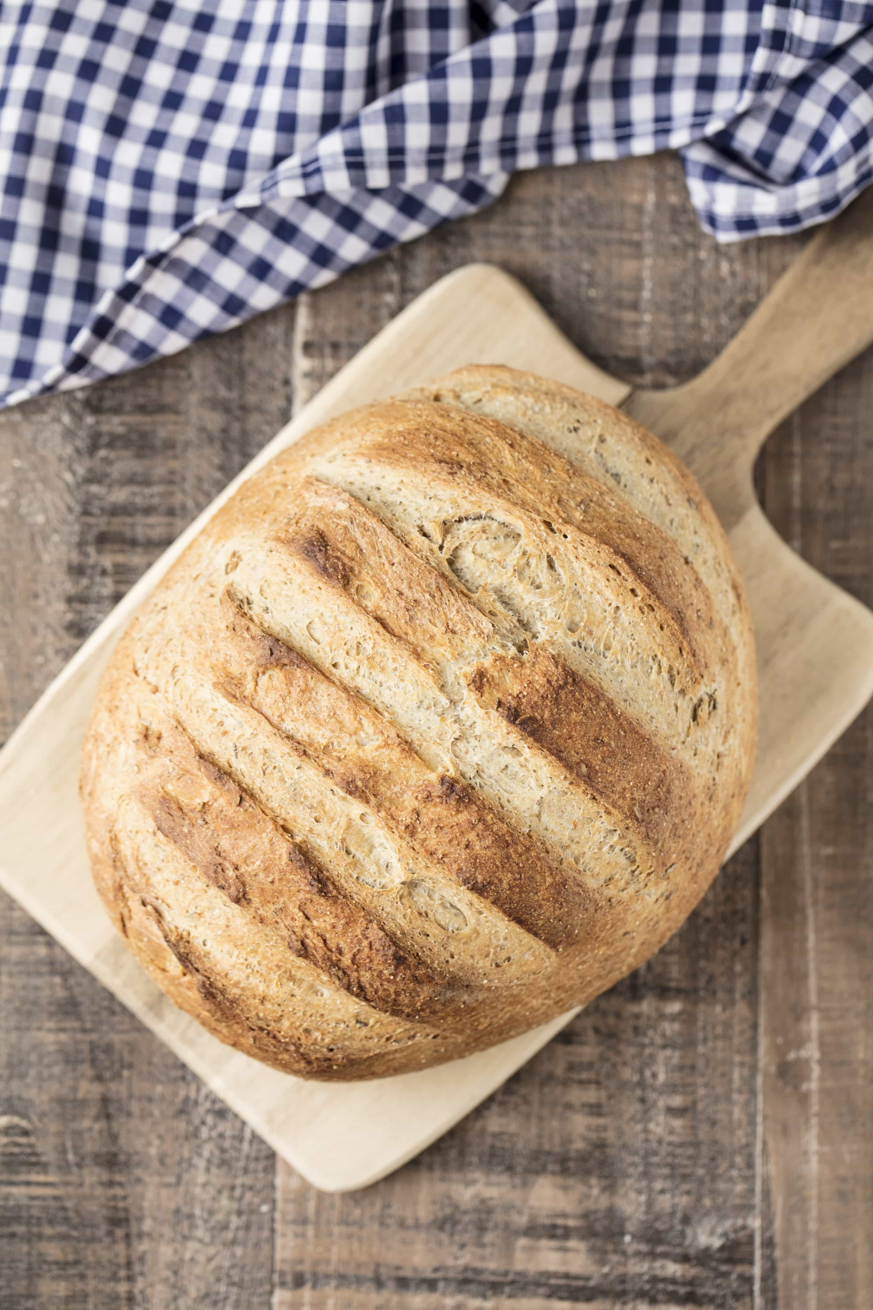 Delicious Homemade Rye Bread doesn't get much simpler than this bakery style artisan bread. Caraway and rye flour gives the bread its distinct flavor. And guess what? No machines required! You can make this bread by hand!