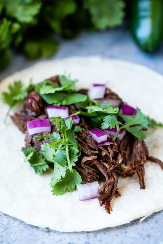 Shredded beef barbacoa sitting on top of a corn tortilla topped with cilantro and red onion