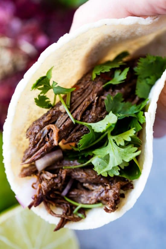 Shredded beef barbacoa taco wrapped in a corn tortilla and topped with cilantro