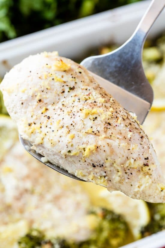 Close up of lemon chicken being held by a spatula over a pan full of lemon garlic chicken broccoli bake.