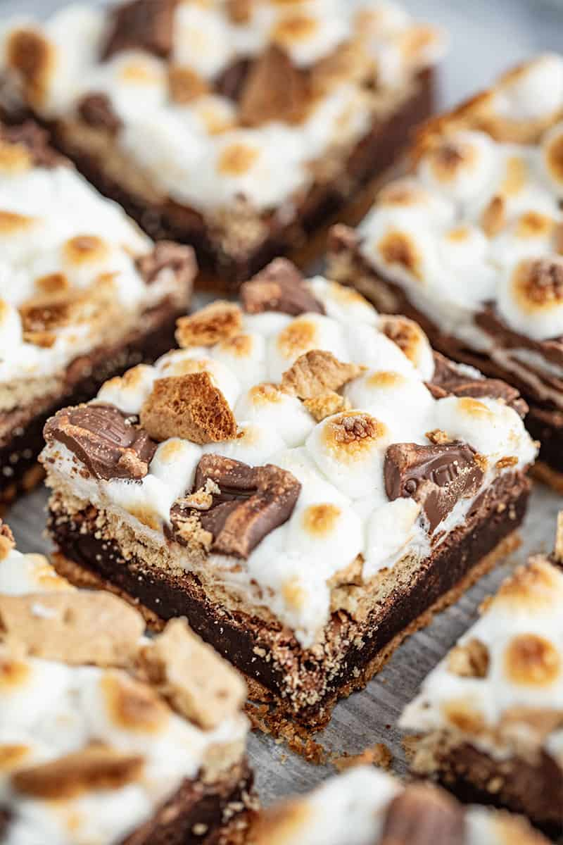 S'mores Brownies cut into squares.