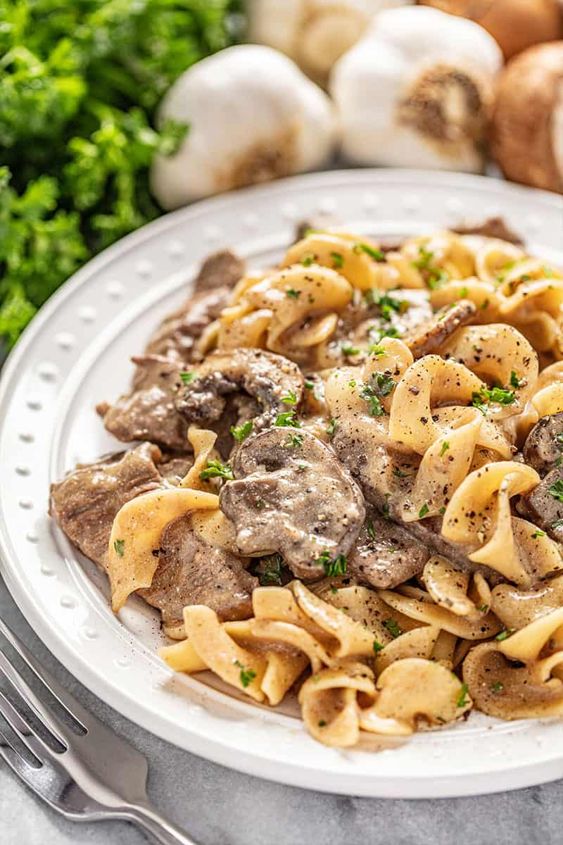 Beef stroganoff served over egg noodles on a white plate